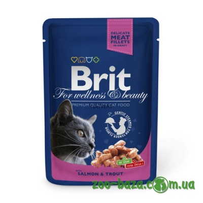 Brit Premium with Salmon & Trout