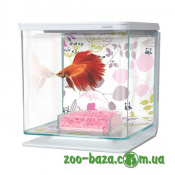 Marina Betta Kit Floral