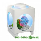 Tetra Betta Projector