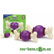 Premier Bouncy Bone