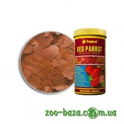 Tropical Red Parroт